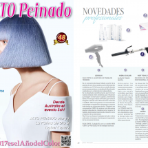 Alto Peinado - Hot Tools